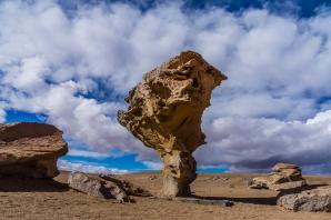 Ein Baum aus Stein