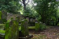 Dschungelfriedhof